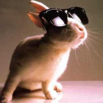Easter-Bunny-Sunglasses
